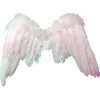 Clipart Angel image #19578