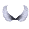 Best Images Free Angel Clipart image #19584