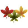 Autumn, Leaves, Chinese, Red Maple Leaf image #41732