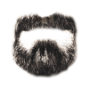 Beard  Beard By Bigburgy thumbnail 865