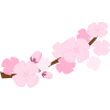 Best Free Cherry Blossom Clipart image #45513
