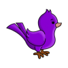 Icon Bird Purple Image Free image #6169