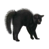 High Resolution Black Cat  Clipart image #30360