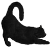 Black Cat Collection Clipart image #30364