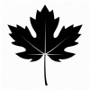 Black Fall Leaves Icon image #41717