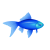 Blue Fish PNG Image image #3925