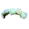 Blue Flower Crown Transparent image #42597