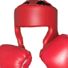 Boxing Clipart image #33001