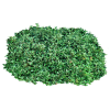 Free Download Of Bushes Icon Clipart image #2816