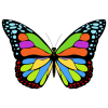 Icon  Free Butterfly image #17679