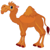 Camel  Photo Transparent image #37106