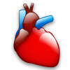 Cardiology, Heart, Organ Icon image #25443