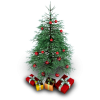Christmas Tree Photos Icon image #23772