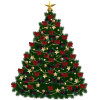Browse And Download Christmas Tree  Pictures image #31853