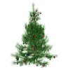 Format Images Of Christmas Tree image #31874