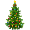 Christmas Tree Transparent Clipart image #35282