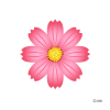 Cosmos Flower|pictures Of Clipart And Graphic Design And image #2130