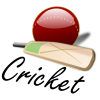High Resolution Cricket Ball  Icon image #28899