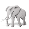 Free Elephant Files image #11600