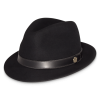 Fedora Hat Transparent Pictures image #34095