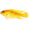 High Resolution Fish  Clipart image #26346