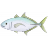 High-quality Fish Cliparts For Free! image #26352