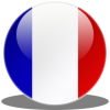 Library France Flag Icon image #18728