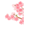 Free Cherry Blossom Vectors Download image #45511