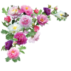 Flower  Clipart image #17937