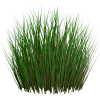 PNG Grass Image image #4758