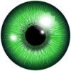 Green Eye Clipart image #42317