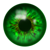 Green Eye  Image image #42309