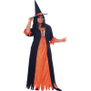 Halloween Witch Costume image #44699