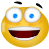 Happy Face Icon image #16000