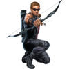 Download Free High-quality Hawkeye  Transparent Images image #18520