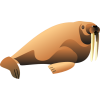 Hd Walrus  Transparent Background image #48637