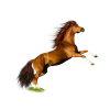 Download Horse Icon image #22542