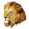 Transparent Background Lion Head image #37129