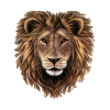 Lion Head Transparent image #37127