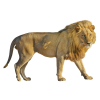 Lion  Transparent Image image #42282