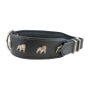 Lion Transparent Background Photo Dog Collar For Dogs image #48128