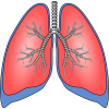 Lung Health image #25400
