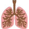 Lung Clipart image #25408