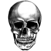 Made Of Metal Skull Photo image #47883