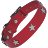 Metal Star And A Red Dog Collar Photos image #48119