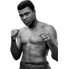 Download For Free Muhammad Ali  In High Resolution image #2923