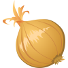 Onion  Clipart image #38738