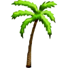 Palm Tree  Available In Different Size image #31908