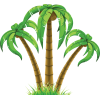 Transparent Background Palm Tree image #31911