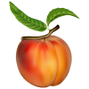 Peach  Clipart Image image #41703